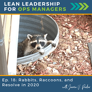 Rabbits Raccoons and Resolve - Lessons Learned in 2020 - Coverart WP - Lean Leadership for Ops Managers Podcast